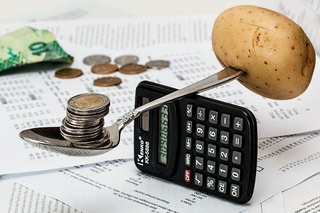 budżet domowy online